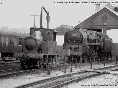 Cranmore engine shed with Bluebell and Black Prince Mon 21st May 1984